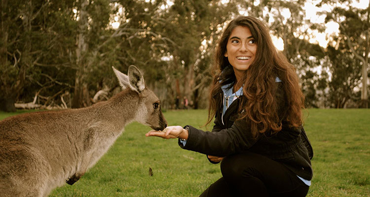 Work & Travel in Australia